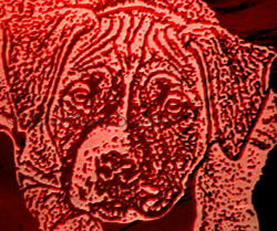 Penny Etched on Red Stained Glass, Amstaff